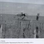 Aeroplan-a-armatei-austro-ungare-in-Boian---1915