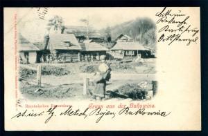 Bojan_1898