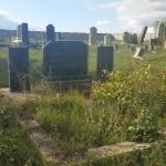 Cimitirul evreiesc din Stroiesti (boan)