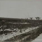 Mahala-grajdurile-de-cai